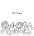 autumn card of sunflowers black and white vector image vector image