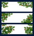 christmas tree and pine branches with copy space vector image vector image