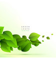 frsh green leaves branch growing background vector image vector image