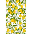 lemon fruits seamless pattern with flowers and vector image vector image