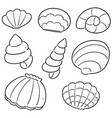 set of sea shell vector image