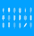 wheat icon blue set vector image
