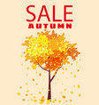 autumn sale template background tree with falling vector image vector image