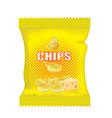cheese chips bag vector image vector image