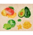 Exotic fruit watercolor mango avocado carambola vector image vector image
