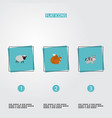flat icons kine chipmunk mutton and other vector image vector image