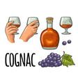 glass barrel and bottle cognac vintage vector image vector image