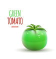 Green Tomato isolated on white Background vector image vector image
