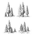 set of hand-drawn cypress vector image