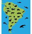 animals on map south america vector image vector image
