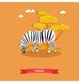 Cartoon Zebra in flat style Design vector image vector image
