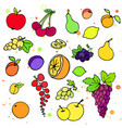 collection of cartoon juicy fruits and berry vector image
