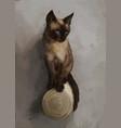 cute thai cat on gray vector image
