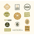 Set of hand drawn organic clothes logo label badge vector image