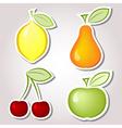 Fruit labels vector image