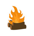bonfire icon design template isolated vector image