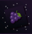 bunch of grapes design vector image vector image