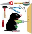 cartoon mole builder vector image vector image