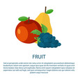 fruit poster with ripe apple yellow pear and grape vector image vector image