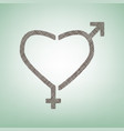 gender signs in heart shape brown flax vector image