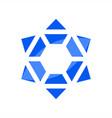 jews symbol logo vector image