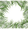 realistic detailed 3d green tropical palm tree vector image