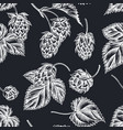 seamless pattern with hand drawn chalk hop vector image vector image