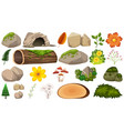 set nature decoration vector image vector image