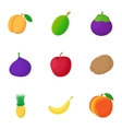 Types of fruit icons set cartoon style vector image vector image