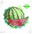 Watercolor watermelon sketch vector image