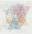 abstract polygonal tirangle animal lion hipster vector image vector image