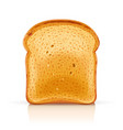 bread toast for sandwich piece vector image vector image