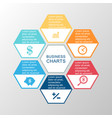 business infographic hexagon vector image