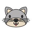 cat pet on white background vector image vector image