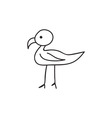 Doodle bird animal icon vector image vector image