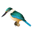Sacred kingfisher vector image vector image