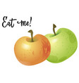 two apples isolated on white background vector image vector image