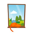 cat sleepping on the window isolated vector image