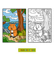 coloring book quokka vector image vector image