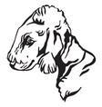 decorative portrait of dog bedlington terrier vector image vector image