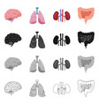 design of body and human logo set of body vector image