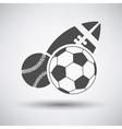 Sport Balls Icon vector image vector image