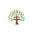 tree icon design template vector image vector image