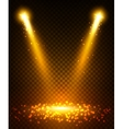 Gold spot light beams on stage vector image
