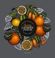 citrus fruits design templete hand drawn colour vector image vector image