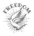 dove in sky and lettering freedom tattoo vector image vector image
