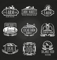 farm market and food festival hand drawn vector image vector image