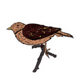 hand drawn bird on white sitting on a vector image vector image