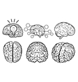 Human Brain Set vector image vector image