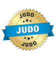judo round isolated gold badge vector image vector image